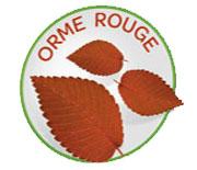 Orme rouge - Arkodigest® No Reflux NR