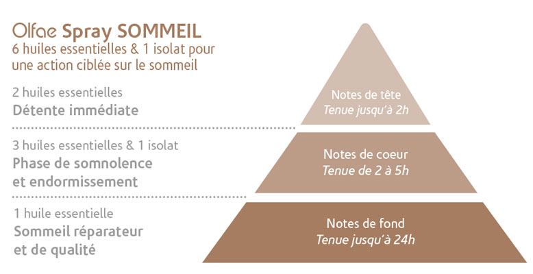 Pyramide sommeil